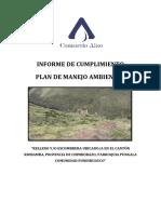 INFORME AMBIENTAL DE CUMPLIMIENTO PUNINHUAYCO.docx