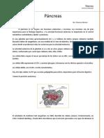 04 - Páncreas.docx