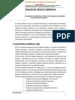 Informe Impacto Ambiental Flores