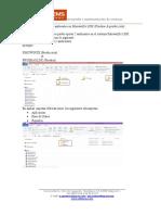 Guia para el Manejo de 2 Ambientes SihowinXe LDK.pdf
