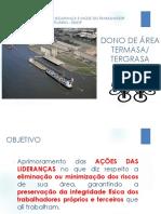 Treinamento - PSSO.32 - Dono de Área.pdf