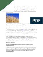 harinas agroindustrias