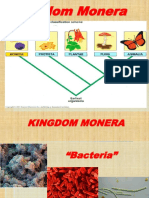1 KINGDOM MONERA.ppt