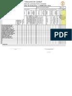 Registro Auxiliar Cayarani 2019