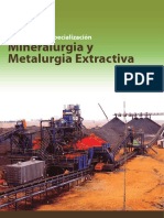 Metalurgia Extractiva 12.pdf