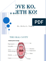 Dental Lecture