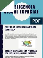 INTELIGENCIA Visual Espacial
