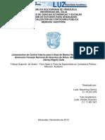 preguntas sobre control interno de bienes.pdf