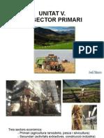 Sector Primari