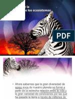 4. Importancia de La Biodiversidad