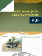 [PD] Presentaciones - Evolucion Convergente y Divergente (1)