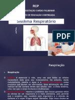 Aula Dr. Ari Anatomia Do Pulmão Rcp