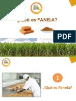 PRESENTACIÓN PANELA 2019