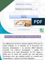 patalogia-vias-urinarias-bajas..pptx