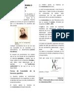 2º TRABAJO PLATAFORMA VIRTUAL PSICOLOGÍA II.docx