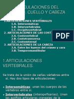 Articulaciones Del Tronco, Cuello y Cabeza 2019