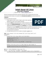 Adm Linux Basic Command