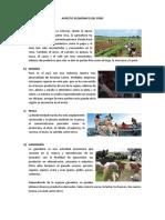 ASPECTO ECONÓMICOS DEL PERU