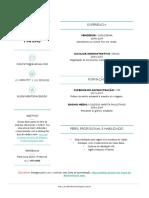 Modelo-de-Currículo-Pronto-para-Baixar-e-Preencher-11-OK.docx