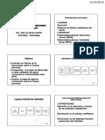 C15 Nutricion.pdf