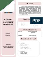cv mariana.docx