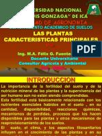 CAPITULO 1 - 2019.pdf