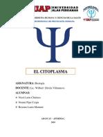 Monografia Citoplasma