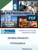 exposicion petroquimica2