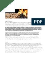 5 - Biomassa