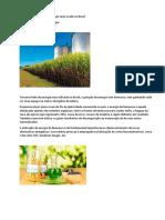 PIRÓLISE_5 - Biomassa