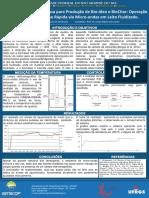 PIRÓLISE_Poster_41321.pdf