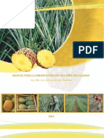 Manual Produccion Piña