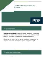externalidades.pptx