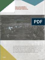 Resumen Proyecto Gutierrez Bolivia.pdf