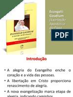 Evangelii Gaudium - Missionários (1)