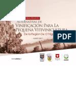 Alternativas_de_Vinificación_para_la_pequeña_vitivinicultura