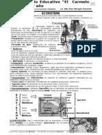 Biología 1er año - 3er y 4to bimestre 2006.doc
