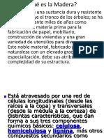 01Qué Es La Madera