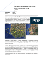 Dakar Container Terminal- ESMP FR