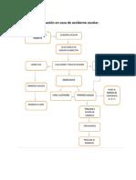 Protocolo de actuación en caso de accidente escolar.pdf