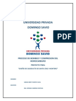 Investigación Del Ducto a Argentina
