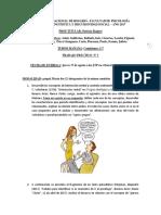 trabajo-prc3a1ctico-nc2b01-comisiones-patricia.docx