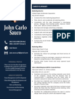 Sample CV profile