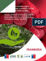 Manual Técnico Productivo de Frambuesa
