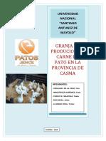 CARDE-PATO-EXPORTACION-2 (1).docx
