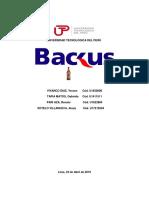 ProyectoBackus AvanceFinal.docx