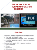 Bi 341 Chapter 14 Molecular Evolution and Population Genetics.kb