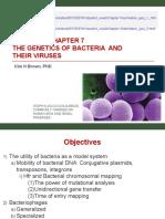 Bi 341 Chapter 7 Bacterial Genetics