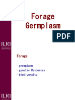 Forage Germplasm 2
