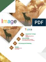 Images in Multimedia
